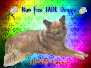 run-free-jade-oct-2016
